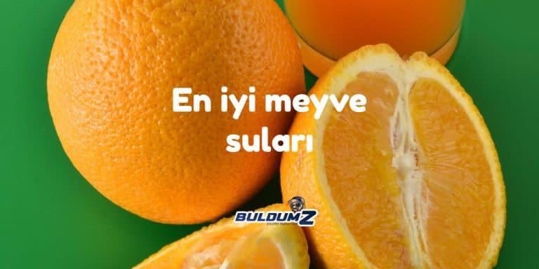 en iyi meyve suları