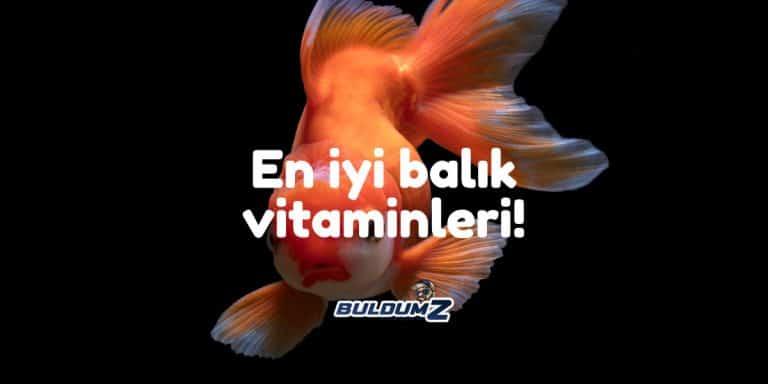 en iyi balık vitamini