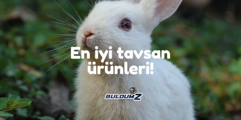 en iyi tavşan ürünü