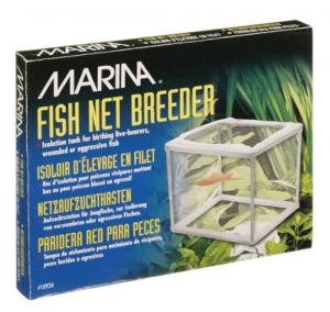 Hagen Marina – Tül Balık Yavruluk