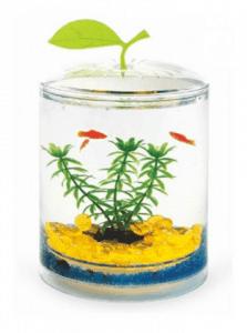Pet Garden – Aquasyncro Crystal Place Akrilik Fanus Akvaryum