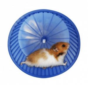 Petzanya – Hamster Çarkı – Küçük