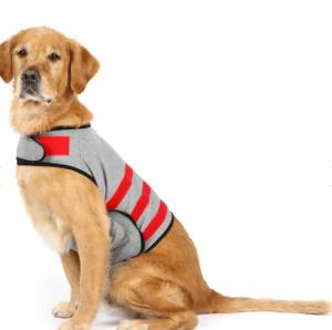 Sherlock Pets – Orta ve Büyük Irk Güvende Hissettiren Köpek Kıyafeti