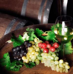 vinolus şarap