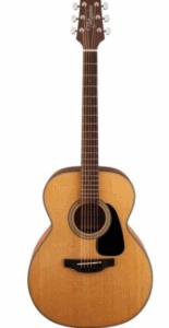 Takamine – Akustik Gitar