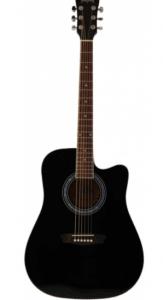 Wasburn – Akustik Gitar